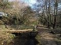 Bridge, Treesmill Valley - geograph.org.uk - 1756567.jpg