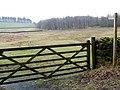 Bridleway near Tosca - geograph.org.uk - 1808398.jpg