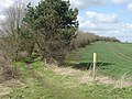 Bridleway to Hoton Hills - geograph.org.uk - 750183.jpg