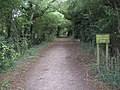 Brinsley - Walking the disused railway line - geograph.org.uk - 1466663.jpg