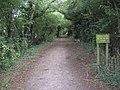 Brinsley - Walking the disused railway line - geograph.org.uk - 1466663.jpg