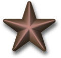 Bronze-star-device-3d.png
