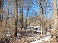 Bryansky District, Bryansk Oblast, Russia - panoramio (56).jpg
