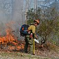 Bull Mountain cooperative prescribed burn (6818246812).jpg