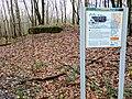 Bunker Hilgenbachstellung 8.jpg