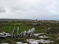 Burren - near Green Road - da gibts keine Wege mehr, da hilft nur über die Mauern klettern, und davon gibt es viele - panoramio.jpg