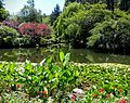Butchart Gardens, Victoria, British Columbia, Canada (29110679182).jpg