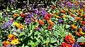 Butchart Gardens - Victoria, British Columbia, Canada (29080718851).jpg
