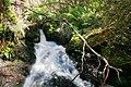 Butchers creek - omeo06.jpg