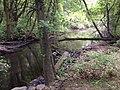 CP 7 - panoramio.jpg