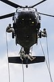 Cadets rappel from Guard Black Hawks (Image 8 of 16) (9160486558).jpg