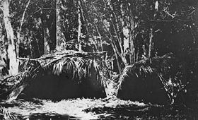 Cape Bedford shelters, Queensland, 1920s.jpg