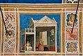 Capella degli Scrovegni (Padova) jm56715.jpg