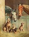 Carl Reichert - Animal friendship.jpg