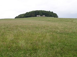 Dryfesdale - Castlehill: the plantation behind the hilltop farm contains two circular settlement sites, presumably Iron Age. The view is from the corner of Fox Covert, at the edge of Birkshaw Forest.