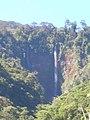 Catarata rio Turrialba - panoramio.jpg