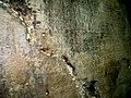 Cave-of-eliauh 22.jpg