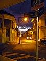 Centro, Franca - São Paulo, Brasil - panoramio (118).jpg
