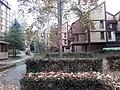 Cerak vinogradi (18.11.2018.), ulica Platana 06.jpg