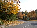 Chalybeate Close Southampton - geograph.org.uk - 603658.jpg