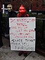 Charmeleon protester.jpg