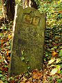 Chenstochov ------- Jewish Cemetery of Czestochowa ------- 66.JPG