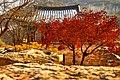Cheongpung Center (175927511).jpeg