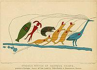 Chief Buffalo's Petition 1849 originally of birch bark.jpg