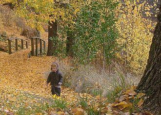 Kyneton - Autumn in the Kyneton Botanical Gardens.