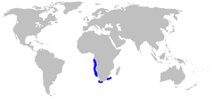 Range of the southern African frilled shark