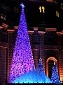 Christmas trees at Mandarin Oriental Taipei fountain 20141223 night.jpg