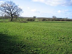Churton Heath - Ridge and Furrow Farmland.jpg