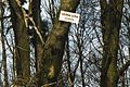 Ciemna Gora in Kocie Gory (12.4.2003r.).jpg