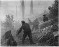 Civilian Conservation Corps enrollees on the fire line in a big forest fire in the west. - NARA - 195838.tif