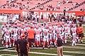 Cleveland Browns vs. Atlanta Falcons (29103688966).jpg