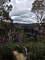 Cliff Top Track - panoramio (7).jpg