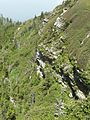 Cliffs at top of Mount Leconte - Flickr - pellaea (2).jpg
