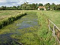 Clogged ditch - geograph.org.uk - 927730.jpg