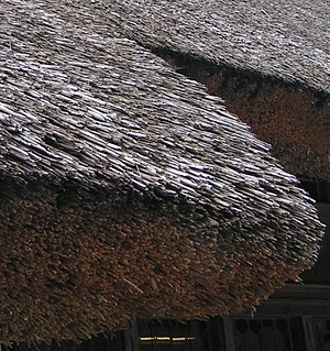Indian vernacular architecture - Closeup of thatching