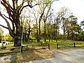 Cmentarz na Rudaku w Toruniu, 2020.jpg