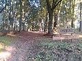 Cmentarz w Chojnicy.jpg