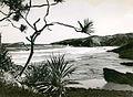 Coastal Scene, Ballina (NSW) (9417081819).jpg