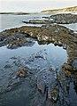 Coastline, Ardnave Point, Islay - geograph.org.uk - 273790.jpg