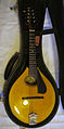 Collings MT2-O mandolin.jpg