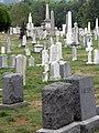 Congressional Cemetery headstones.jpg
