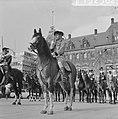 Coolsingel van Rotterdam, een delegatie uit Berkel-Rodenr te paard om de gemeent, Bestanddeelnr 915-2382.jpg