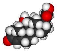 Cortisol-3D-vdW.png