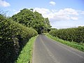 Country road leading to Maxton - geograph.org.uk - 246274.jpg