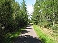 Culloden Forest - geograph.org.uk - 215993.jpg