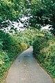 Culmstock, lane near Spiceland - geograph.org.uk - 35693.jpg